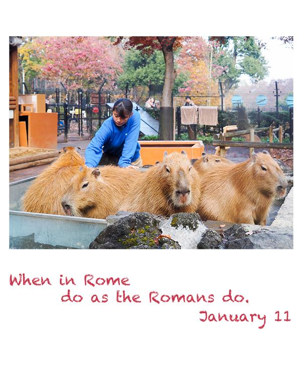When in Rome do as the Romans do.