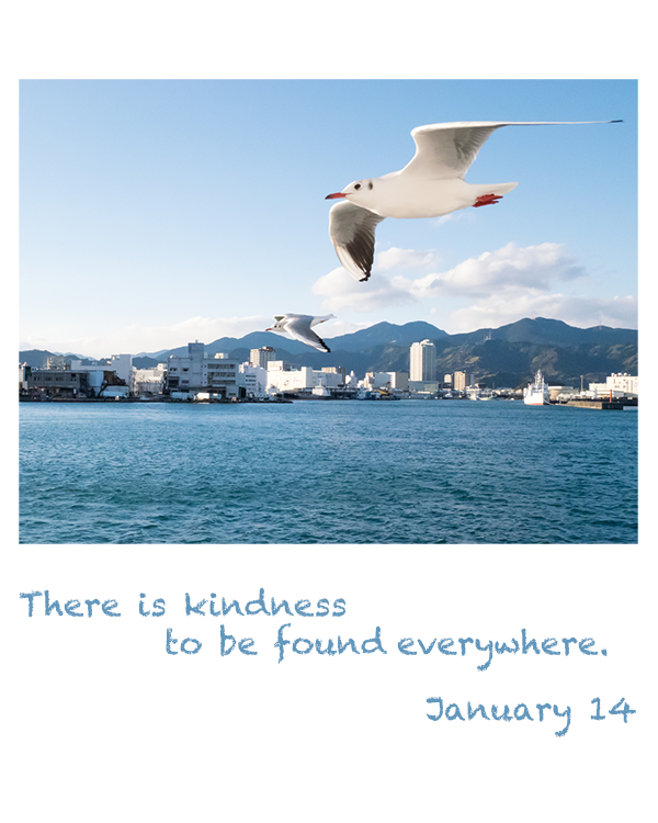 there is kindness to be found everywhere.