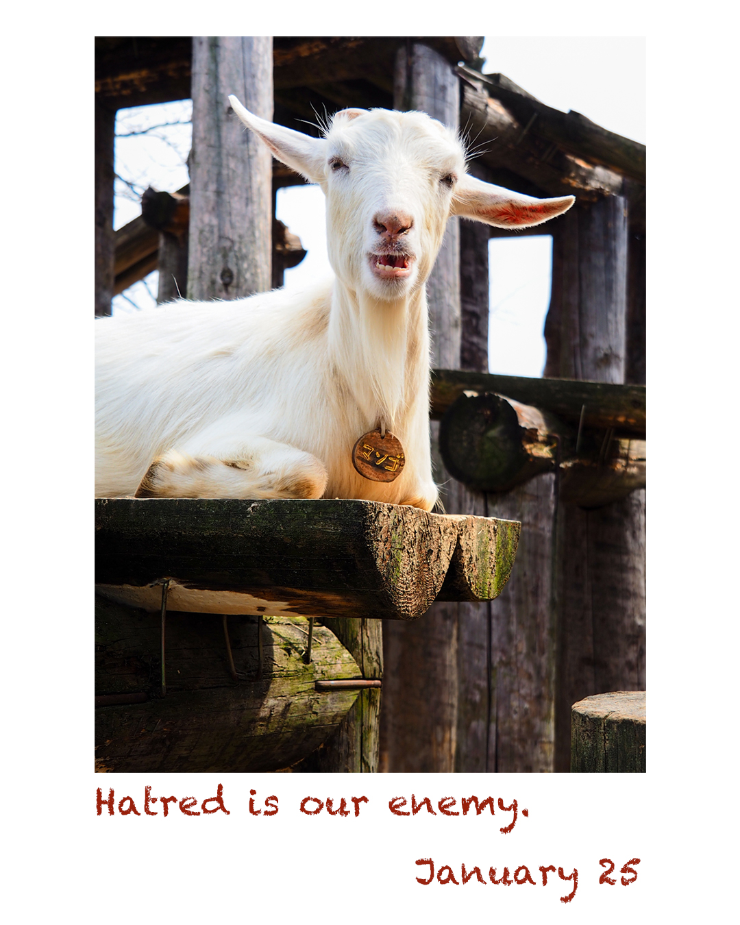 Hatred is our enemy.