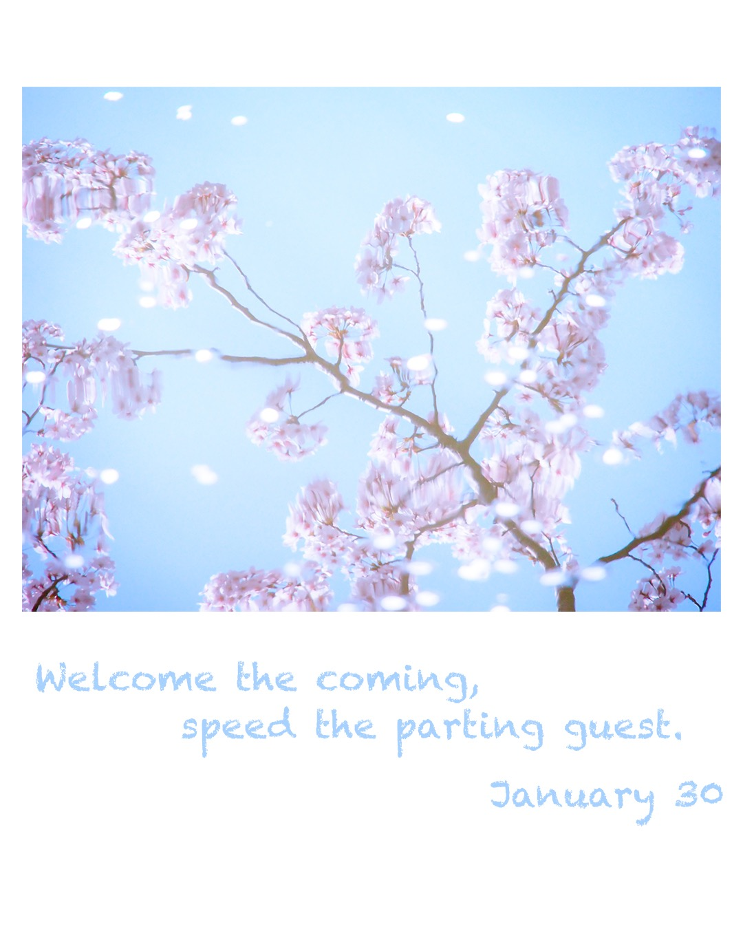 Welcome the coming,speed the parting guest.