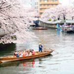 「お江戸深川さくらまつり」で和船に乗って、お花見を楽しみました