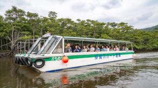 沖縄へ行ってきました(2) 西表島の仲間川でマングローブクルーズ