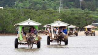 沖縄へ行ってきました(3) 水牛車にゆられて由布島へ チンダラカヌシャマヨ(愛しい人よ)