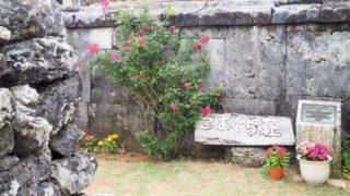 沖縄へ行ってきました(5) 小浜島へ