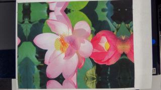 エプソン「和紙プリントの基礎と手軽で楽しい和紙プリントの飾り方」に参加しました