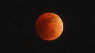 月に魅せられて
