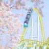 東武動物公園の開園チャリティーイベントで桜を満喫