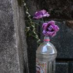 さくら新道に残された造花