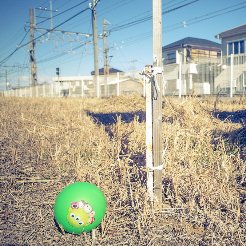 平成最後の正月