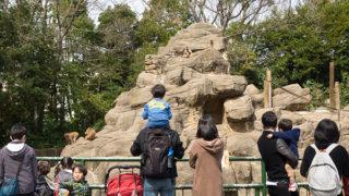 ガンレフ主催「OLYMPUS OM-D E-M1 Mark II」を体感できる動物園撮影会に参加しました