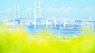 PetitPhotoRouge~横浜で春のお花撮影散歩~に参加しました