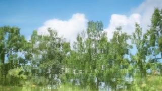 池の中の青空